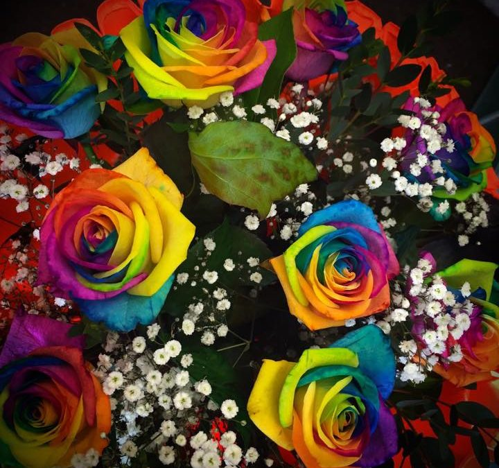 Ann & Susan Florists Q card offer