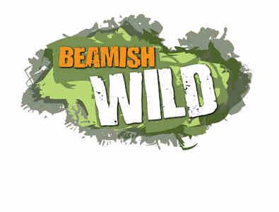Beamish Wild Logo
