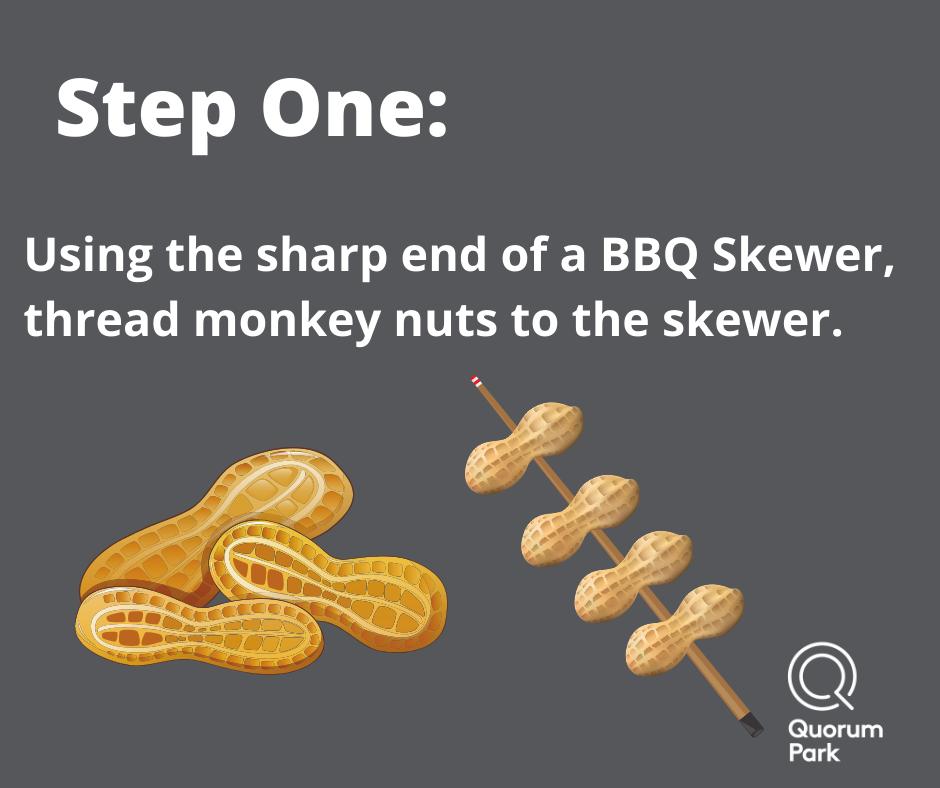 Skewer Monkey Nuts onto a BBQ Stick