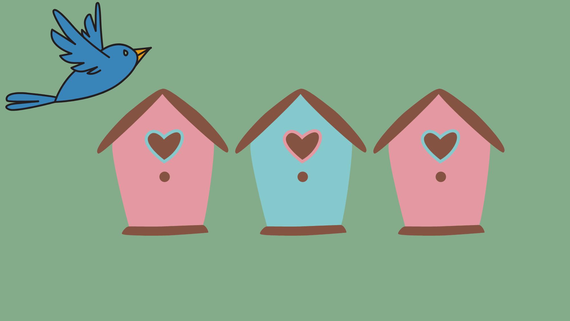 Build a bird box